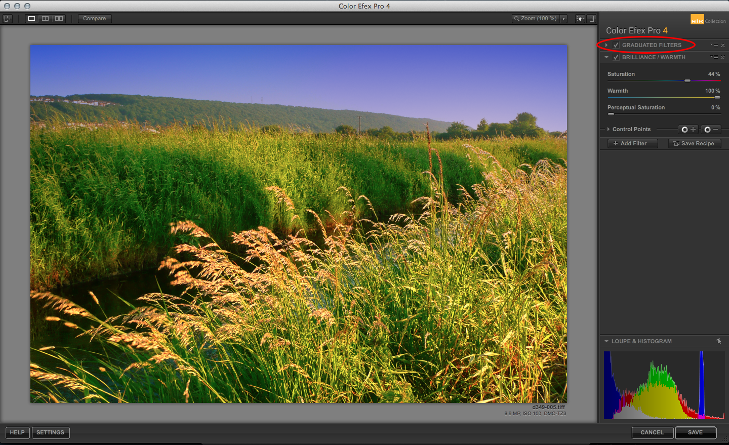 Color Efex Pro stacking filters