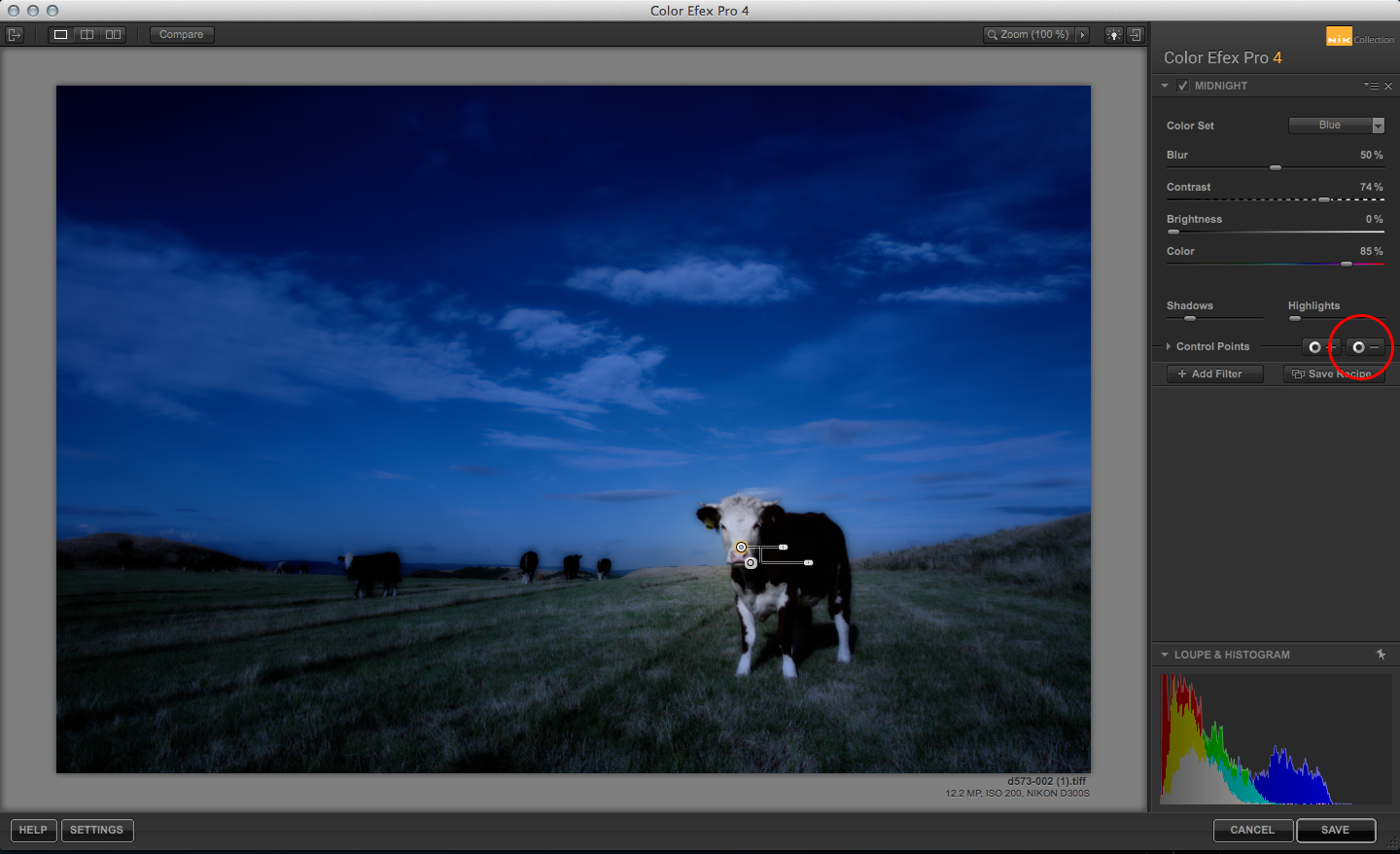 Color Efex Pro Midnight effect