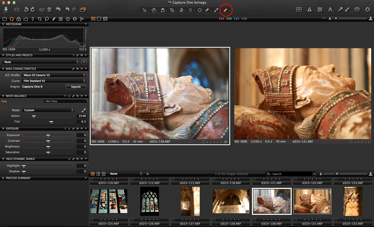 Capture One copy adjustments