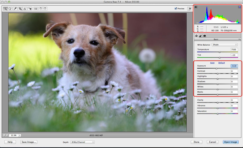 Photoshop Elements RAW conversions