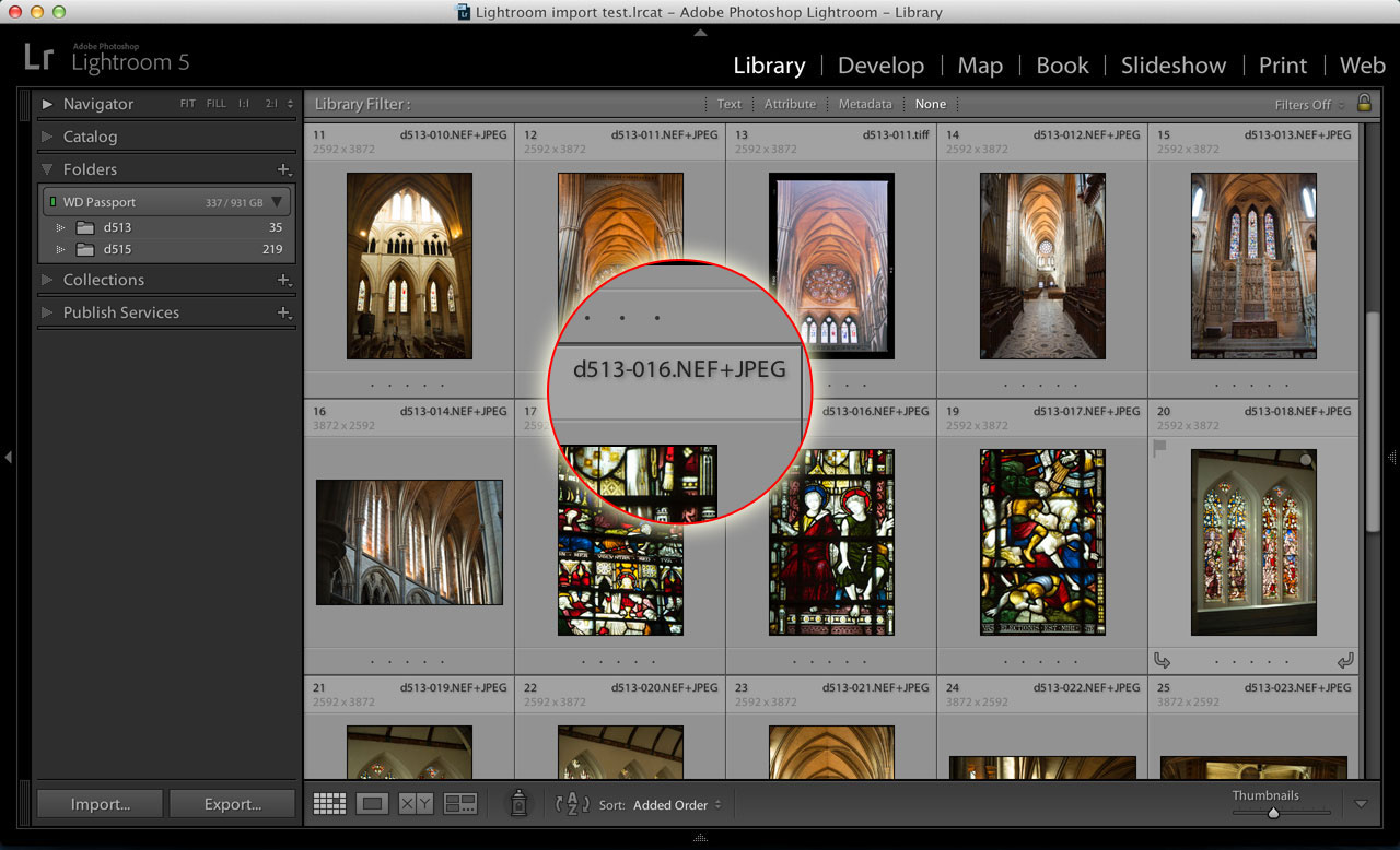 How to manage Lightroom RAW+JPEG pairs - Life after Photoshop